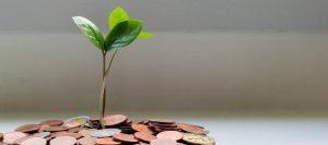 Crowdfunding Online Seminar