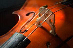 Kleinstes Konzert der Welt kommt nach Neubrandenburg